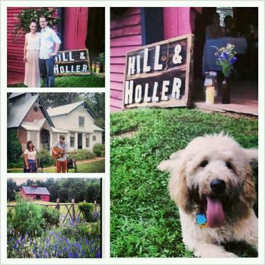 hill holler
